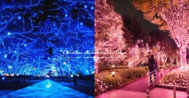 東京最浪漫的兩處聖誕燈飾!夢幻的「青之洞窟」與「冬之櫻」,度過幸福的聖誕夜〜