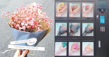 再沒有不送花的理由!韓國超方便「乾花販賣機」,歐巴送我一束美美乾花好嗎