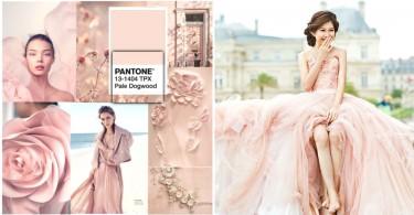 2017Pantone春夏流行色!甜美優雅的「淡山茱萸粉」,婚禮、穿搭、妝物通通換上吧〜