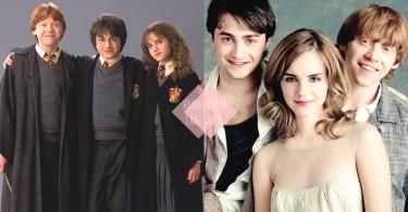 即使過了16年也是重要的伙伴!哈利波特演員友誼的小秘密,他們的友誼就是無可取代!