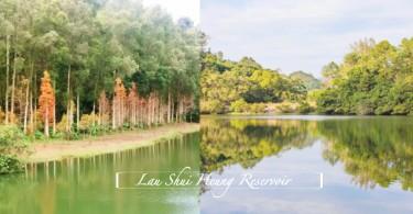 香港隱世天空之鏡!粉嶺流水響水塘,寧靜如畫的仙氣美景你又怎能錯過?