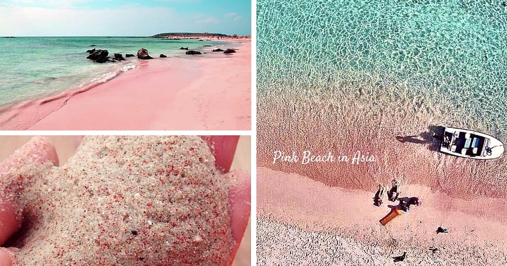 絕對是仙境沒錯!亞洲也有粉紅海灘...不用坐長途機啦~