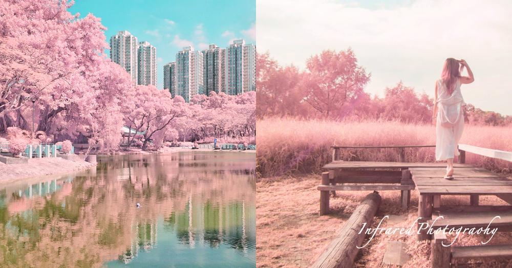 創造你的粉紅國度!紅外線攝影簡易介紹,讓平凡景色染上夢幻童話色彩〜