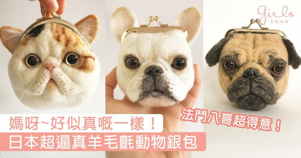 動物控必買!日本超逼真羊毛氈銀包,法鬥、八哥、貓貓全部都像真度極高〜