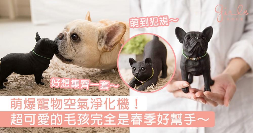萌爆寵物空氣淨化機!超可愛的毛孩完全是春季好幫手,療癒狗狗造型真的好想集齊一套~