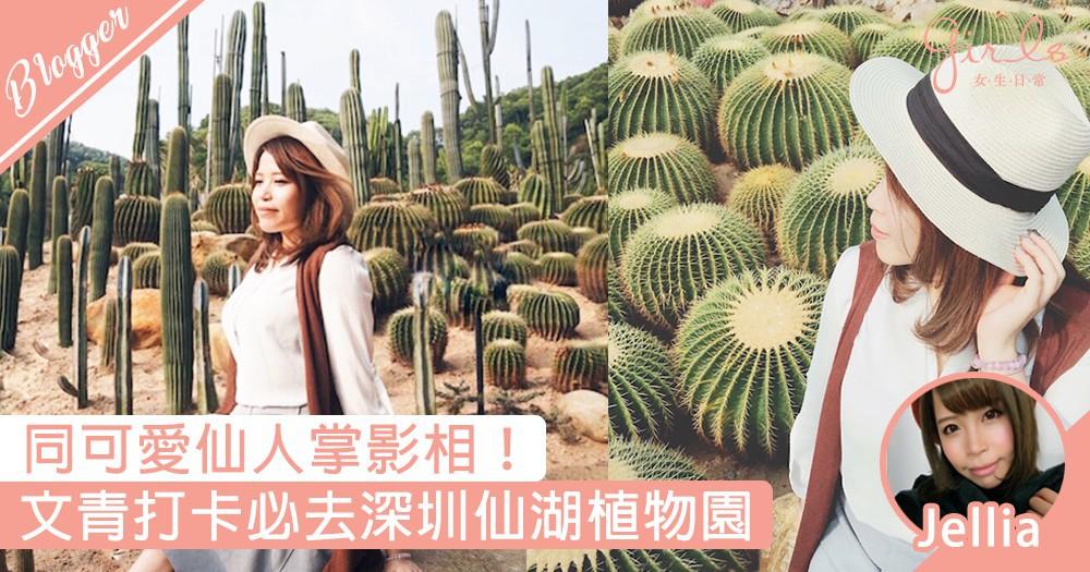 【出走香港!文青必到打卡點-深圳仙湖植物園~】