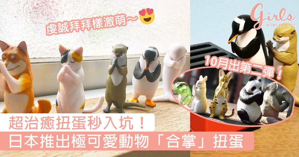 超治癒扭蛋秒入坑!日本推出極可愛動物「合掌」扭蛋,超高人氣被扭到斷貨~