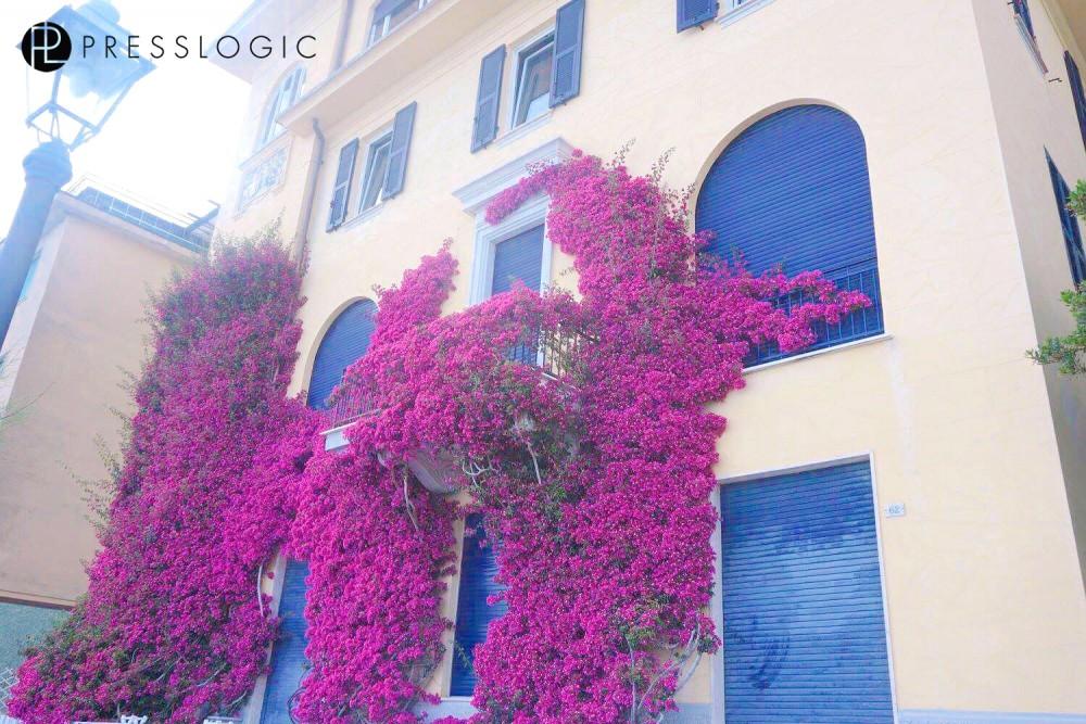 Italy_House