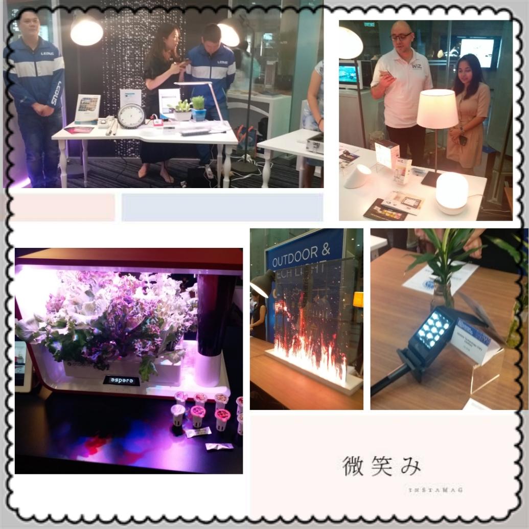 智慧節能燈飾。香港國際秋季燈飾展 和 戶外及科技照明博覽展