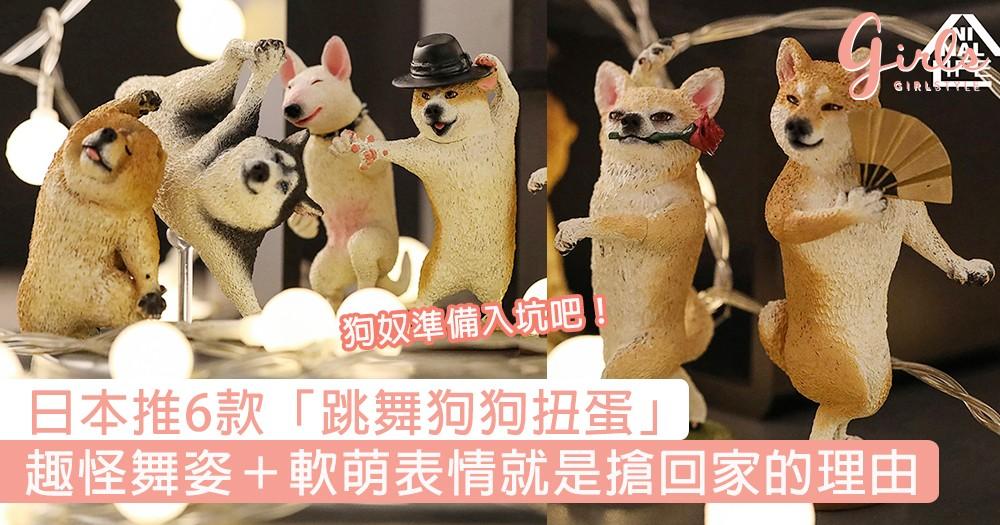 狗奴準備入坑吧!日本ANIMAL LIFE推6款「跳舞狗狗扭蛋」,趣怪舞姿+軟萌表情就是搶回家的理由!