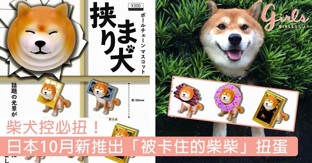 柴犬控必扭!日本10月新推出「被卡住的柴柴」扭蛋,擠出三下巴超可愛~