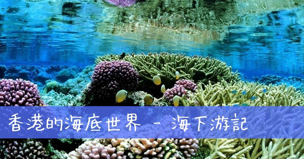 香港的海底世界